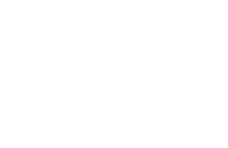 The Game - World Peace Game Foundation